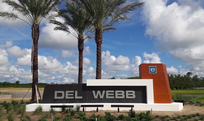 Del Webb eTown