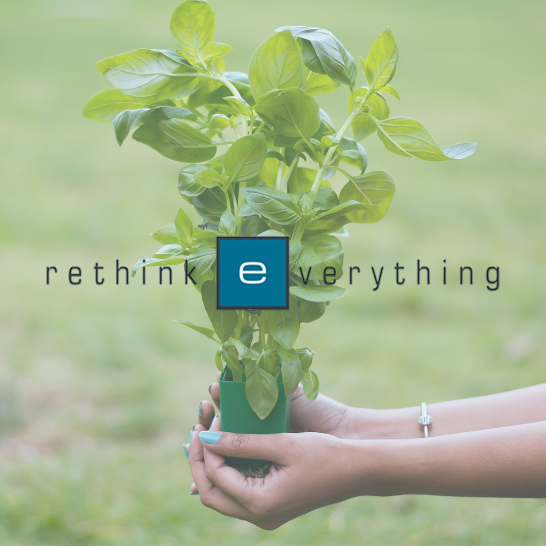 Insta_green plant_rethink